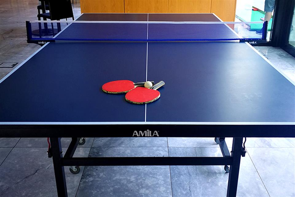 Ping Pong Table by airgame